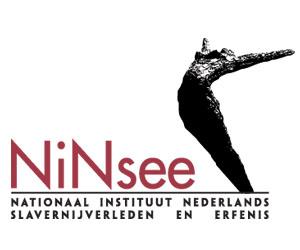 NiNsee logo