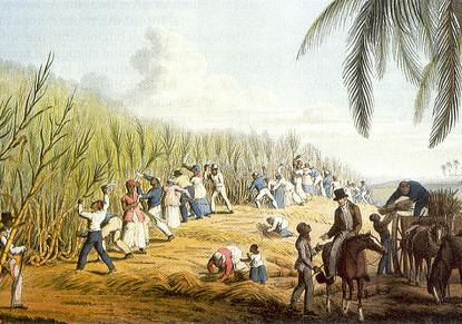 slavernij_plantage