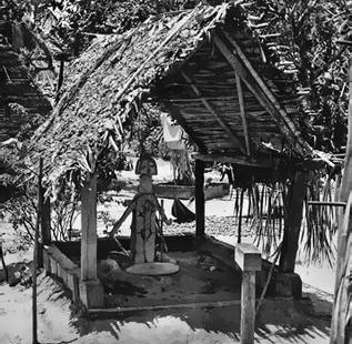 offerplaats-bosnegers
